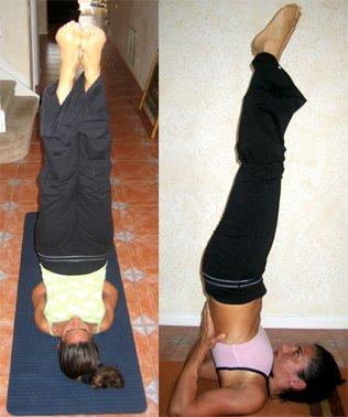 shoulder stand  sarvangasana  yoga mundo