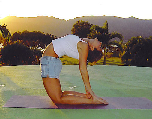 ¿Que es Yoga?