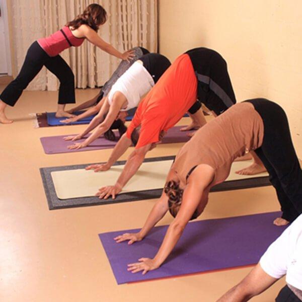 Gentle Yoga Flow Monica Hornung